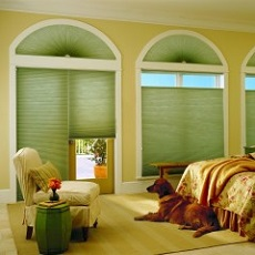 Applause® Honeycomb Blinds